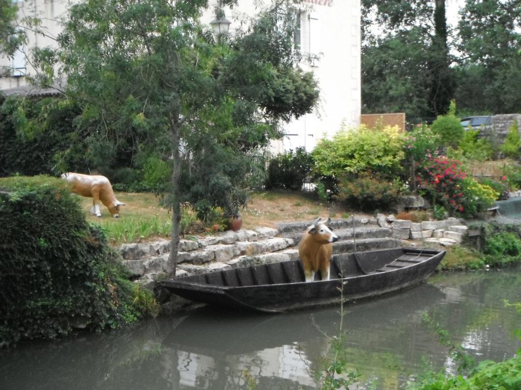 Marais poitevin transport de vache en barque